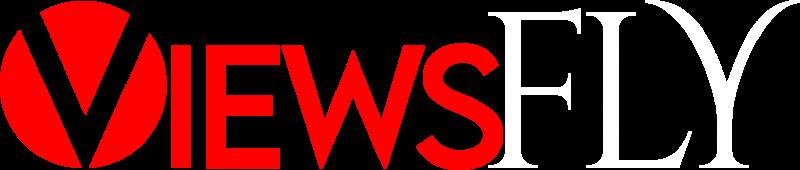 ViewsFly Logo